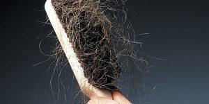 cabelo caindo