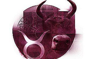 Signo de touro: profissões indicadas