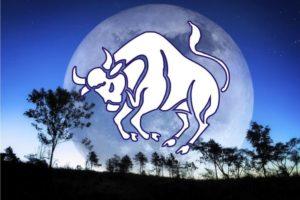 como conquistar homem de touro