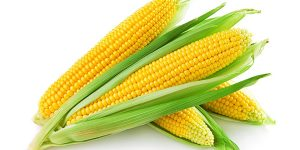 sonhar com milho