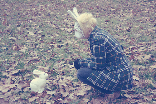 sonhar com coelho o que quer dizer