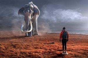 sonhar com elefante significado