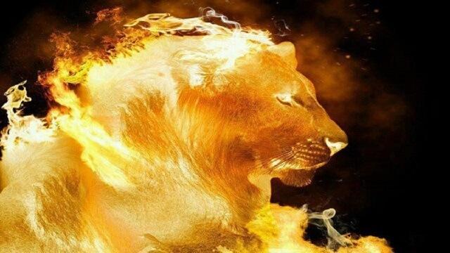 Signo de Leão em 2021: horóscopo e previsões