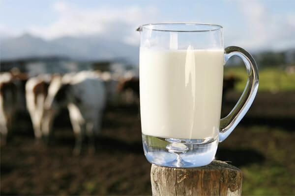 Sonhar com leite: o que isso significa?