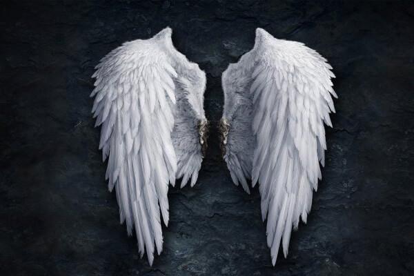 Sonhar com asas: o que isso quer dizer?