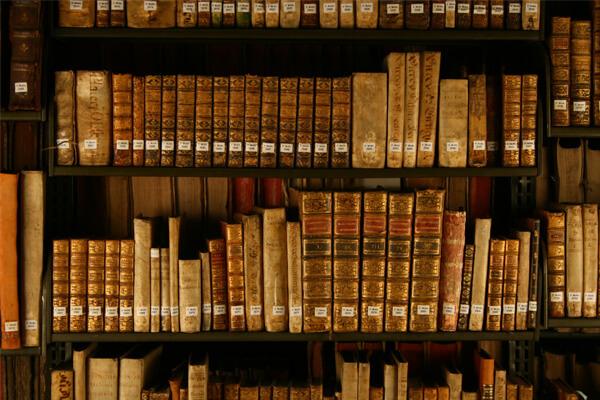 Sonhar com biblioteca: quais são os significados?