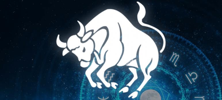frases do signo de touro