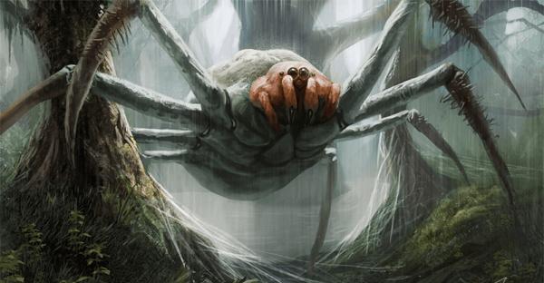 sonhar com aranha grande