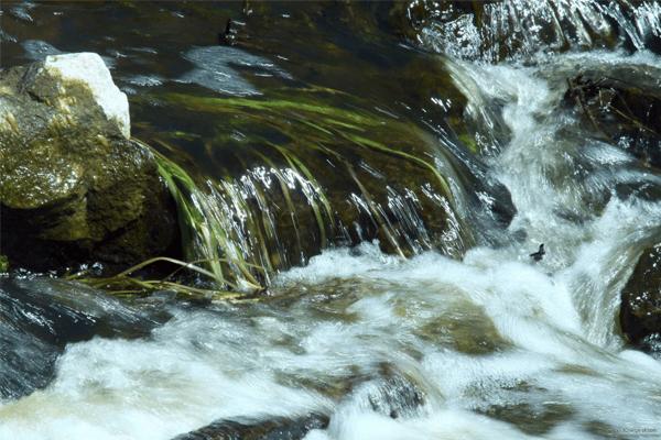 Sonhar com água corrente: o que significa?