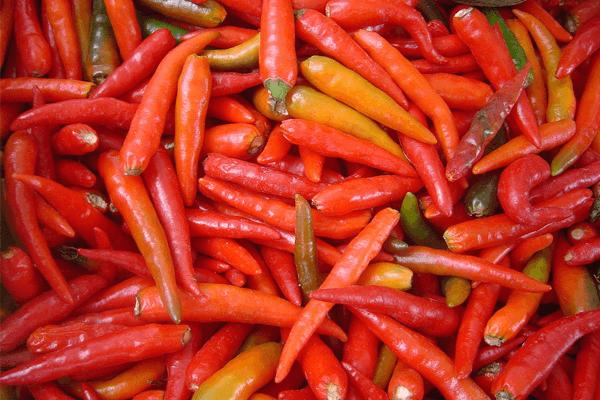 Sonhar com pimenta: quais são os significados?