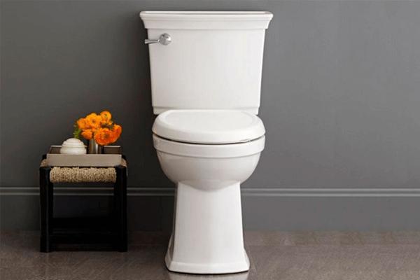 Sonhar com vaso sanitário: o que isso quer dizer? Veja mais.