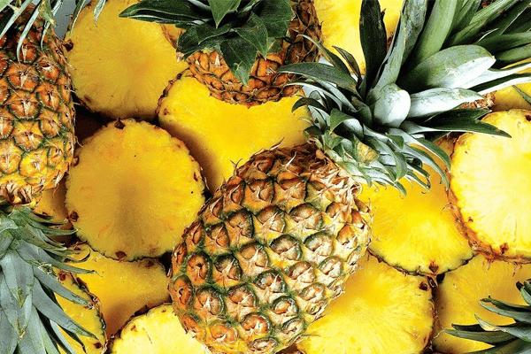 Sonhar com abacaxi: o que isso significa? Veja aqui!