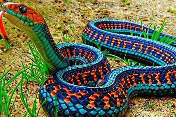 Sonhar com cobra colorida: o que isso significa? Veja aqui!