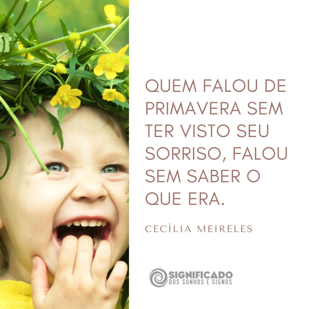 Citação de Cecília Meireles
