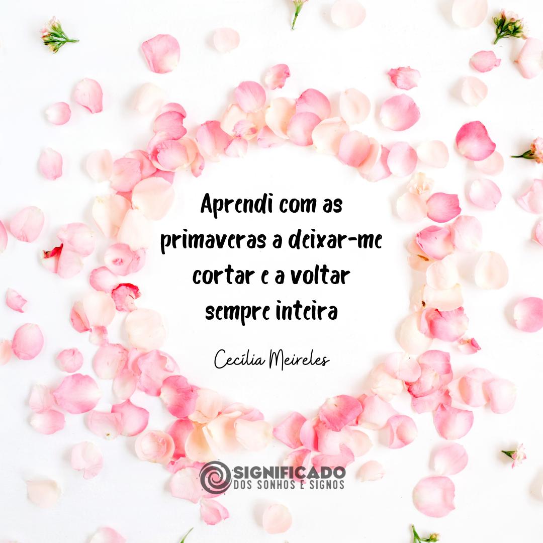 Frase romântica de Cecíliia Meireles