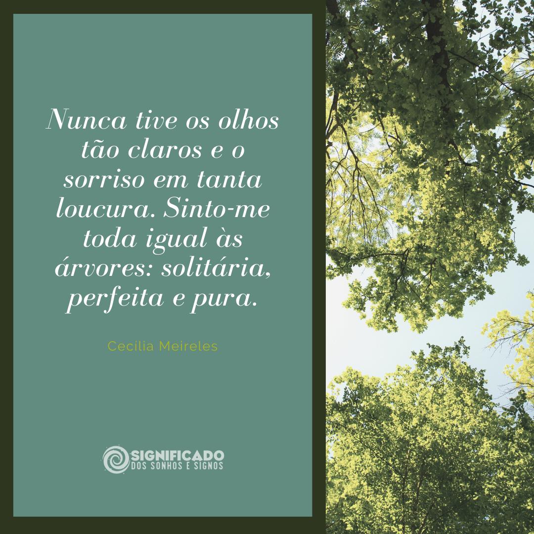 Poema Cecília Meireles