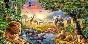 animais signos