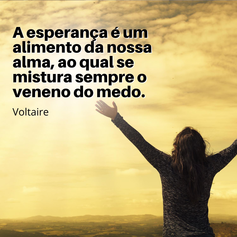 Voltaire - Frases para Mensagens e Status