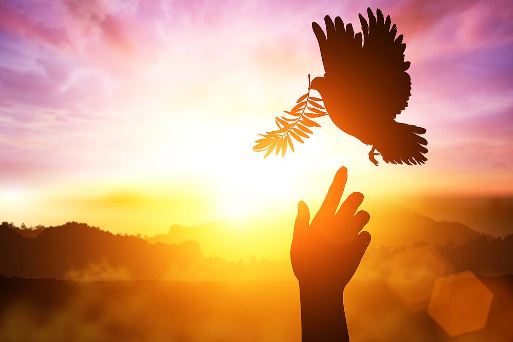 Espírito Santo é o caminho para o Pai