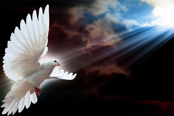 O Espírito Santo habita em todos nós: escute o que ele tem a dizer
